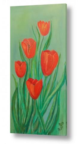 פרחים גבעולים | זר צבעונים