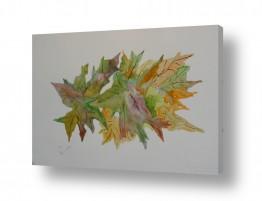 ציורים ציור בצבעי מים | עלים 1