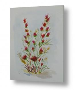 פרחים גבעולים | שיח פורח