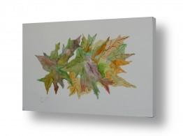 ציורים ציור בצבעי מים | «עלים«4