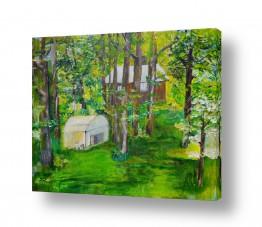 תמונות לפי נושאים דשא | אביב בחצר