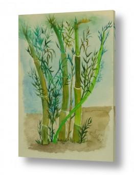 ציורים ציור בצבעי מים | שיחי במבוק