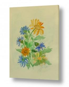 ציורים ציור בצבעי מים | פרחי מרגנית