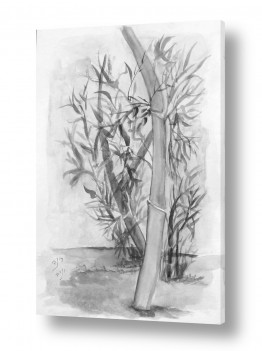 ציורים ציור בצבעי מים | עלי הבמבוק
