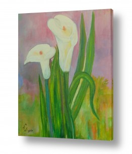 פרחים גבעולים | קלות