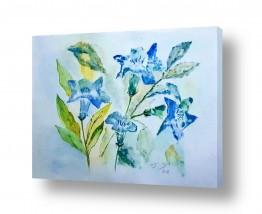 נוף חול | פרחים בכחול