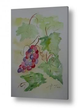 עלים ירוקים ירוק | אשכול ענבים