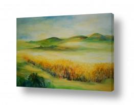 תמונות נופים נוף שדות | שדות שבעמק