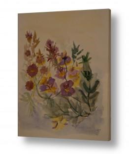 צמחים פרחים | פרחים בסגול