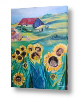פרחים חמניה | חמניות בחווה