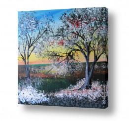 ציורים ציור   אביב