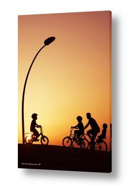 כלי רכב אופניים | טיול משפחתי