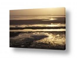 נוף חופים | זהב על הירח