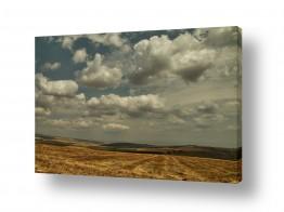 שדות חיטה | משט עננים
