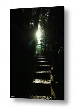 תמונות לפי נושאים חושך | אור