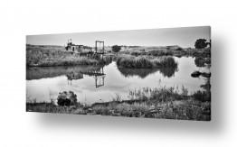 תמונות לפי נושאים השתקפות | מי נהר