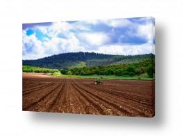 נוף תמונה פנורמית | שדות עמק יזרעאל