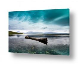 צילומים תמונות נוף | ענף צף
