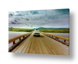 כלי רכב מכוניות | הגשר