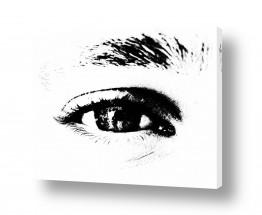 צילומים שחור לבן | עין בשדה בהיר