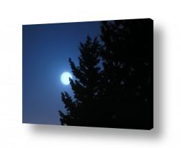 צילומים אסטרונומיה | בראש כחול