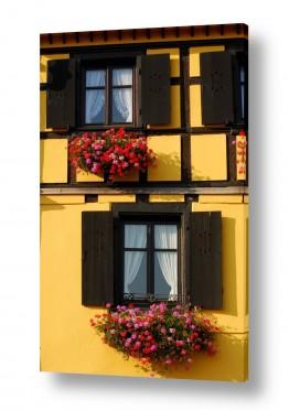 אירופה צרפת | חלונות מטופחים