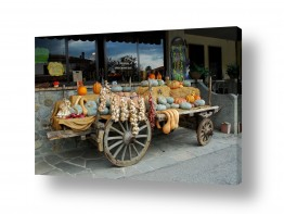 תמונות לפי נושאים כרכרה   עגלה