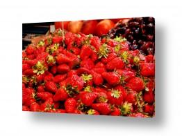 צמחים תות | בואי נקנה רק תותים