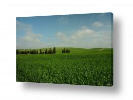 תמונות לפי נושאים מרחב | מרחבים ירוקים