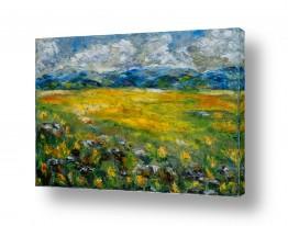 צמחים פרחים | שדות