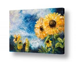 צומח פרחים | קיץ