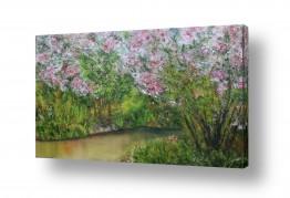 ציורים מים | פריחת האביב