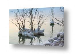 נוף מיים | ים המלח