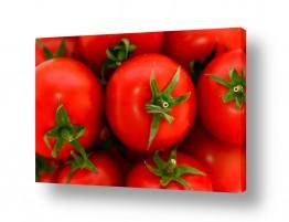 צילומים צילום תקריב | עגבניות