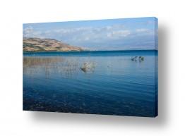 ימים ואגמים בישראל כנרת | הכנרת