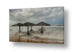 צילומים טניה קלימנקו | סערת החורף