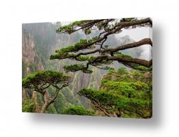אסיה סין | ההר הצהוב - Huangshan