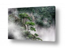 תמונות לפי נושאים טיול | ההר הצהוב - Huangshan