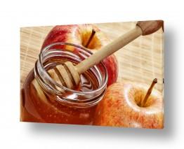חיות בר דב | דבש ותפוחים
