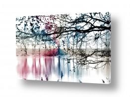 צילומים ציפי נוימן   האגם הקפוא
