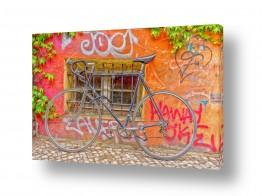 כלי רכב אופניים | פינה קסומה