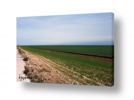 תמונות לפי נושאים מרחבים | שדה ירוק ושמים