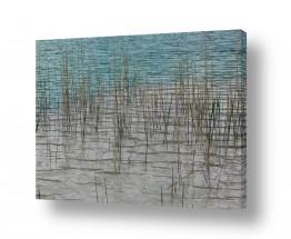נוף חופים | מים כחולים אפורים