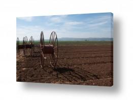 נוף שדות | גלגלים בשדה