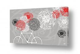 כלי רכב אופניים | חופש הגדול