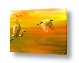 נושאים תמונות נופים נוף | ציפורים במעוף צהובה