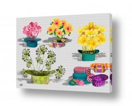 פרחים פרחים לפי צבעים | כובעים
