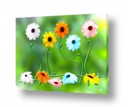 צומח פרחים | יום חג