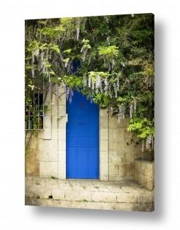 נוף חול | דלת כחולה