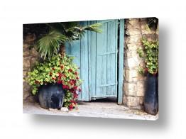 צילומים כפרי | פרחים בכניסה